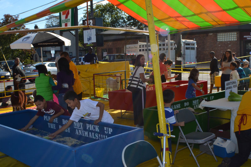 soccer-and-west-hempstead-street-fair-276