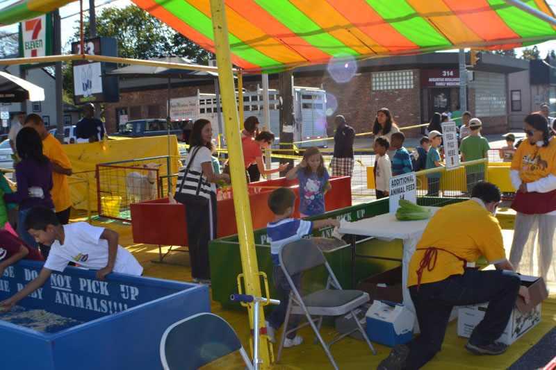 soccer-and-west-hempstead-street-fair-277