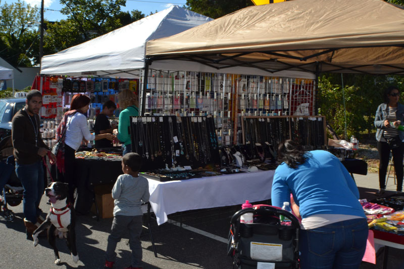 soccer-and-west-hempstead-street-fair-283
